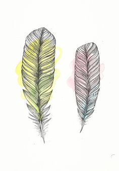 Spring Feathers Original Illustration  by FeatherAndSixpence, £25.00