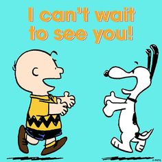 Peanuts - Charlie Brown and Snoopy Snoopy Love, Charlie Brown Snoopy, Charlie Brown Quotes, Snoopy And Woodstock, Snoopy Shop, Peanuts Gang, Peanuts Cartoon, Snoopy Images, Snoopy Pictures
