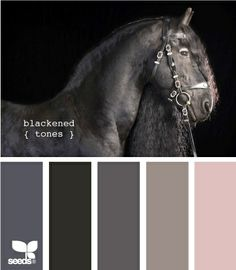 Rethinking our living room colors and Im kind of in love with these but I would add in a cream color to lighten it up a bit.