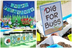 Great bug party idea: dig for bugs!
