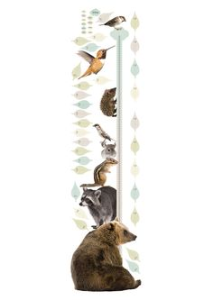 Vrolijke groeimeter muursticker met 8 dieren 40 x 150 cm √ Premium Quality √ Supermatte uitstraling √ Geen witte of transparante randen