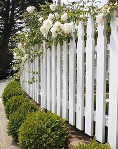 Lansformade spjälor på vitt staket