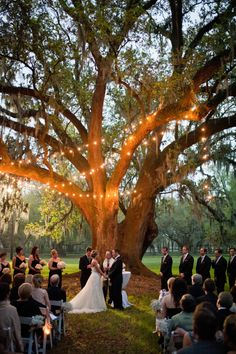 Get Polished Events - Southern Plantation wedding ceremony lighting for a just before dark wedding www. Budget Wedding, Wedding Tips, Wedding Planning, Budget Bride, Wedding Posing, Wedding Beauty, Wedding Details, Fall Wedding, Outside Wedding