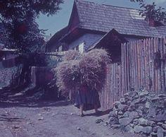 #Žakarovce #Spiš #Slovensko #Словакия #Slovakia Flora, Europe, Culture, Traditional, House Styles, Inspiration, Travel, Technology, Beautiful