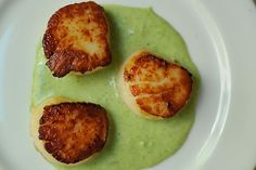 Seared Scallops with Spring Onion and Tarragon Cream || Food52