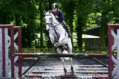 Riding Advice: How to Solve Show Jumping Issues -- Tips to fix knock-downs, early & late take-off, refusals, staying straight, and rushing fences.   yourhorse.co.uk