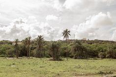 Cabo Verde - Boa Vista Rabil