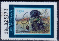 Montana Waterfowl Stamp 1989.