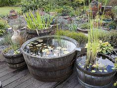Il n'est pas nécessaire d'avoir beaucoup d'espace pour installer un bassin. Voici des solutions pour recréer, de manière simple et naturelle, un petit point ...