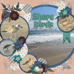September 2016 Template Bundle, Empty Nest Kit; extra alphas, inked bits, and messy papers by Designs by Connie Prince      Font: Allura