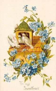 Vintage Bird Postcards ~ Miscellaneous Seasons
