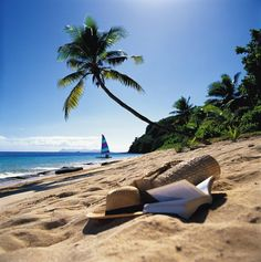 Quem gostava de começar o dia aqui?  #beach #sun #summer #trip #holiday #tbt #instasun #instamood #amazing #place #wunderful #happy #fiji #follow