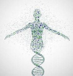 What exactly is a DNA Diet? DNA diet is an individualized diet based on a person's genetic data. They are based on nutrigenomics, a relatively new science that examines the effect of genetic variation on the body's metabolism. Art Adn, Dna Kunst, Dna Art, Genome Project, Dna Project, Project Ideas, Dna Molecule, Human Genome, Human Dna