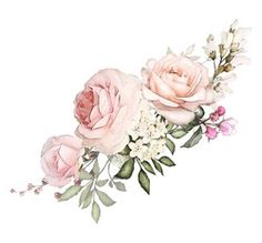 composition of flowers pink rose, Leaf and buds. Cute illustration for wedding or greeting card. branch of flowers isolated on white background Rose Illustration, Floral Illustrations, Watercolor Rose, Watercolor Flowers, Pink And White Background, Decoupage Paper, Arte Floral, Flower Frame, Flower Wallpaper