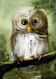 Owl Art Print, Original Bird Art