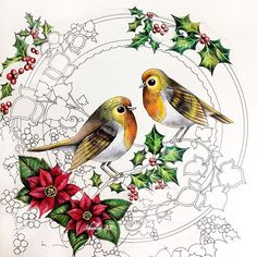 New WIP - Robins and Berries❤️. Coloringbook: Johanna's Christmas Medium: Prismacolor Premier pencils. . #johannaschristmas #johannabasford #coloringbook #coloring #coloriage #colouringforadults #prismacolor #coloredpencils #adultcoloring #shirleytutopia #colouring #colouringbook #coloringtutorial #塗り絵の本 #大人の塗リ絵 #著色本 Coloring Book Art, Colouring Pages, Adult Coloring, Enchanted Forest Coloring Book, Johanna Basford Secret Garden, Johanna Basford Coloring Book, Christmas Drawing, Polychromos, Color Pencil Art
