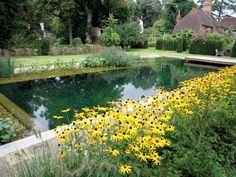 Image detail for -... blog by inBloom Event Design: natural looking swimming poolies