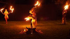 Indigo Heart Song with her Fire Wings...Stunning