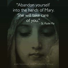Padre Pio on the care of Our Lady. Catholic Quotes, Catholic Prayers, Catholic Saints, Religious Quotes, Roman Catholic, Blessed Mother Mary, Blessed Virgin Mary, Mother Mary Quotes, Kingdom Of Heaven