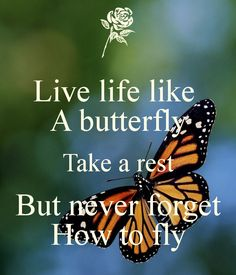 'Live life like A butterfly Take a rest But never forget How to fly' Poster quotes Live life like A butterfly Take a rest But never forget How to fly butterfly quotes Quotes To Live By, Me Quotes, Motivational Quotes, Inspirational Quotes, Qoutes, Queen Quotes, Wisdom Quotes, Quotations, Funny Quotes
