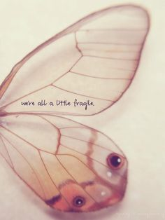 We are all a little fragile.  Be gentle with your self and others.