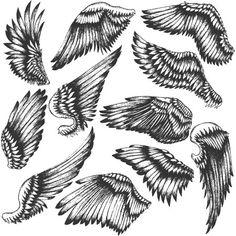 wings-vector-pack-2-stock-vectors.jpg (450×450)