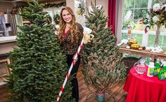 Shirley Bovshow's Tips on Keeping Your Christmas Tree Fresh