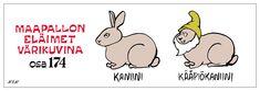 Eläinsanasto | NEN sarjakuvat Finland, Comics, House, Egg As Food, Home, Comic Book, Haus, Cartoons, Comic Books