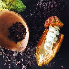 A short video of bean to bar chocolate making at Ixcacao Chocolate in Belize, using organic cacao, no synthetics or preservatives. A beautiful process.