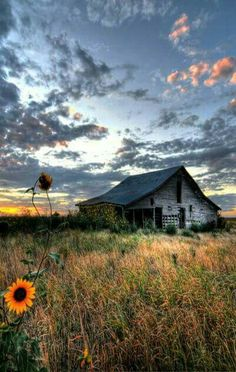 Beautiful old farm, barn, country living, country life Abandoned Houses, Abandoned Places, Old Houses, Farm Houses, Farm Barn, Old Farm, Country Barns, Country Life, Country Living