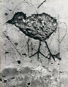 Brassaï Graffiti de la Série V, Animaux: Chimère, 1933-1956.