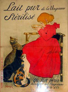 Affiche in de webshop van kattenkabinet.nl - Lait pur stérilisé #cats