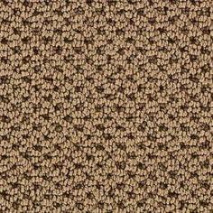 Martha Stewart Living Mount Vernon - Color Spud 12 ft. Carpet for stairs