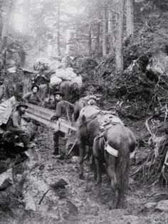 size: Photographic Print: Climbing the Dyea Trail on the Way to the Chilkoot Pass During the Klondike Gold Rush : Subjects History Photos, Us History, Strange History, Asian History, Tudor History, History Facts, Canadian History, American History, Old West Photos
