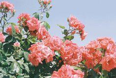 (74) 3d gifs | Tumblr