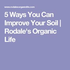5 Ways You Can Improve Your Soil | Rodale's Organic Life