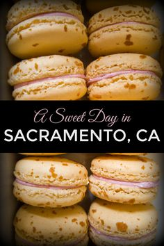 Fun foodie things to do in Sacramento, California. A free, dessert-themed walking tour of Downtown & Midtown Sacramento. Visit the city's best bakeries, sweets shops, and more. Sacremento California, Roseville California, California Vacation, Northern California, Best Bakery, Drinking Around The World, Us Travel Destinations, Sweetest Day, Best Places To Eat