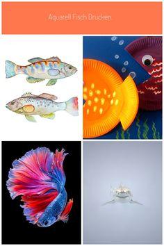 Bilder kostenlos ausdrucken fische 51 Mandala