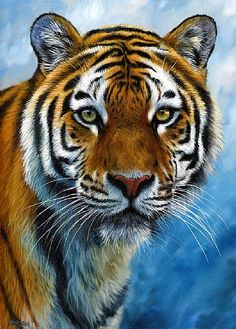 Shop for tiger art from the world's greatest living artists. All tiger artwork ships within 48 hours and includes a money-back guarantee. Choose your favorite tiger designs and purchase them as wall art, home decor, phone cases, tote bags, and more! Beautiful Cats, Animals Beautiful, Cute Animals, Wild Animals, Baby Animals, Animal Paintings, Animal Drawings, Gato Grande, Tiger Painting