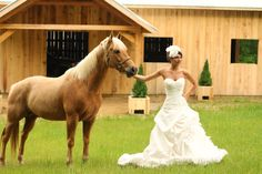 Have your wedding at Dewberry Farm.  Farm weddings dewberrymanor.com