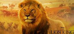 Resultado de imagem para filme live action o rei leao