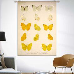 Combo Design is officieel dealer van Naturalis Unlimited ✓Vijftien gele en witte vlinders doekdoek ✓ Verschillende varianten verkrijgbaar ✓ Gratis verzending (NL)✓ Curtains, Shower, Prints, Design, Products, Exotic, Rain Shower Heads, Blinds