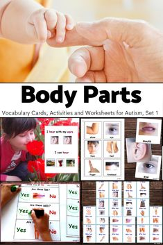 This is exactly what I need for a few of my kiddos. I can have the kids who are non-verbal, identify the different parts by pointing out which parts are which. I can also have them match similar, but not identical, parts. There are so many things that I can do with this wonderful resource. #bodyparts #autism Autism Activities, Autism Resources, Science Resources, Language Activities, Classroom Activities, Teacher Resources, Teaching Ideas, Sorting Activities, Classroom Setup