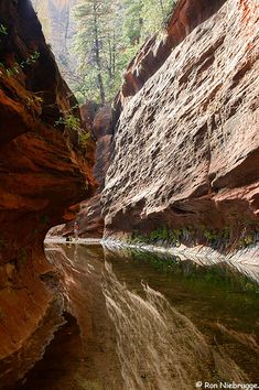 A hiker at the end of the Oak Creek Trail,  Coconino National Forest, Sedona, Arizona