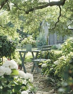 table under trees