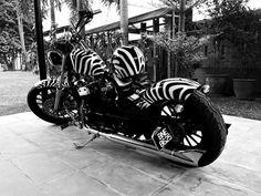 Zebra stripe bobber in black and white