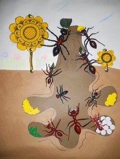under an ant hill preschool science