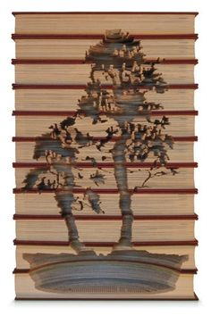 Book carvings | These books are to be admired, not read.  Book deconstruction. Books become incredible works of art, by Australian artist, Kylie Stillman's nature inspired creations.  She also carves entire book shelves and window blinds!