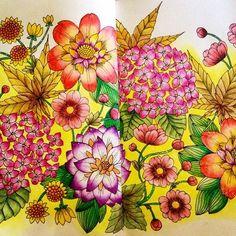 #twilightgarden #coloriagesforadults #coloriagepouradulte #coloringbook #coloriageantistress #mariatrolle #derwent #aquarelle #arttherapy