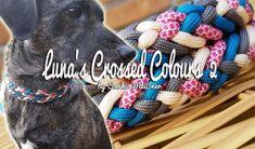 Luna's Crossed Colours 2 Paracord Tutorial, Bracelet Tutorial, Paracord Projects, Paracord Ideas, Paracord Dog Leash, Swiss Paracord, Paracord Bracelets, Pet Collars, Pet Accessories